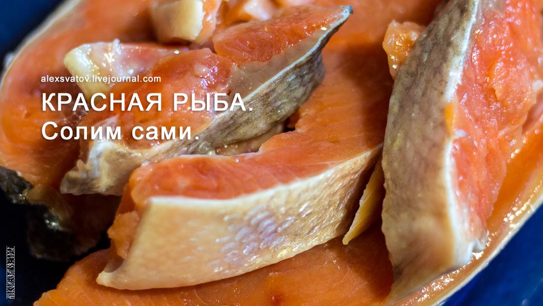 Солить красную рыбу рецепт фото
