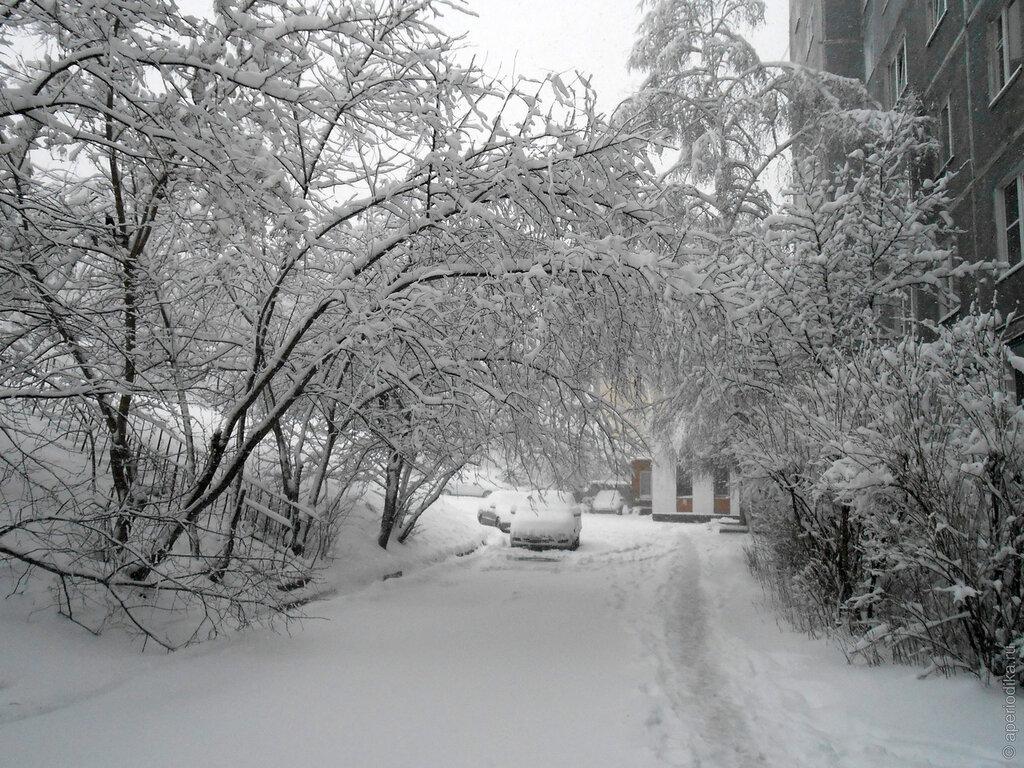 Златоуст завалило снегом