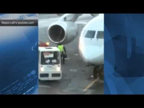 Грузчики в аэропорту Пулково вышвырнули багаж пассажиров прямо на асфальт
