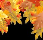 Осень81