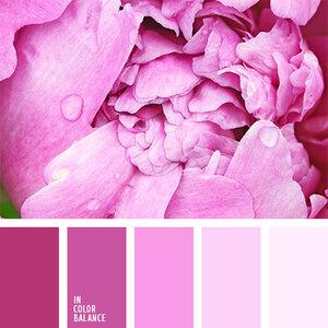 подборка фото цветов