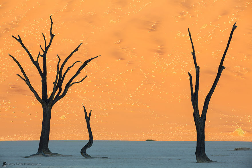 Невероятные фотографии природы, сделанные без использования Photoshop 0 1432be 9e2453c2 orig