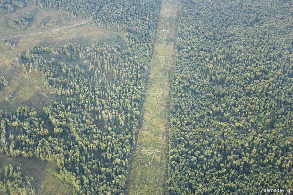 Просека в лесу для ЛЭП