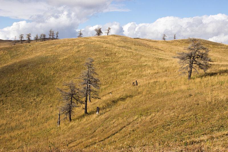 гора Колпаккарагай, Нарымский хребет