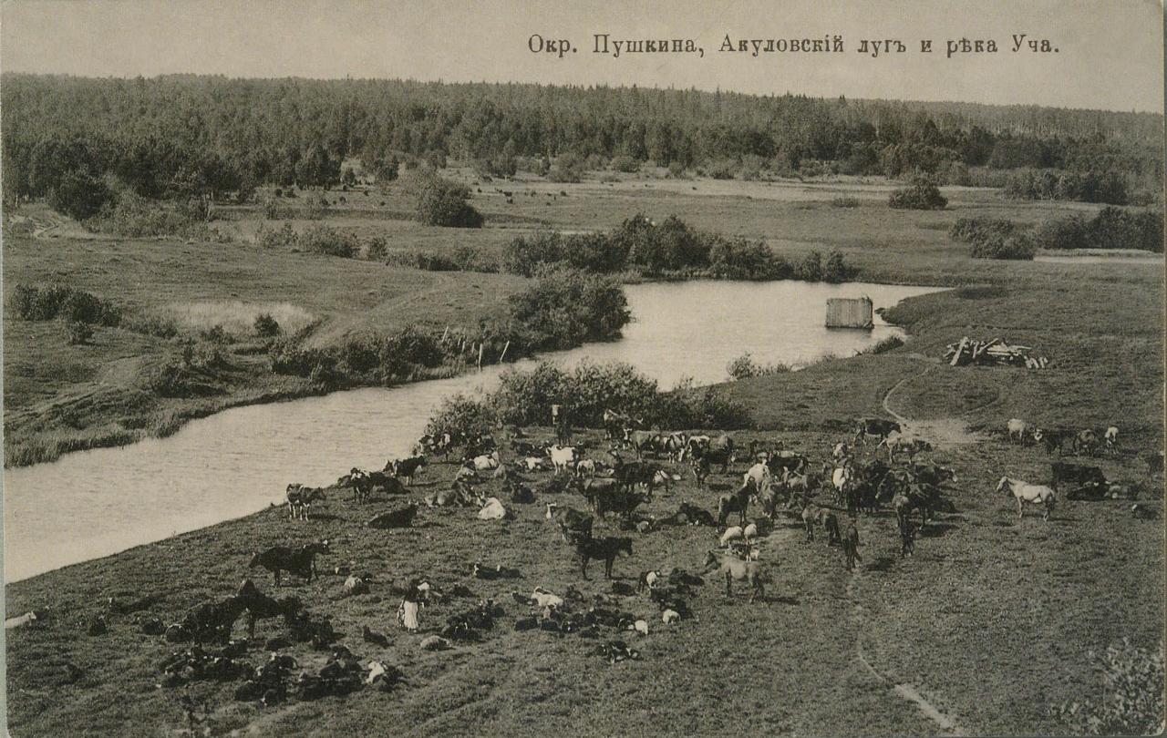 Окрестности Москвы. Акуловка. Акуловский луг и река Уча