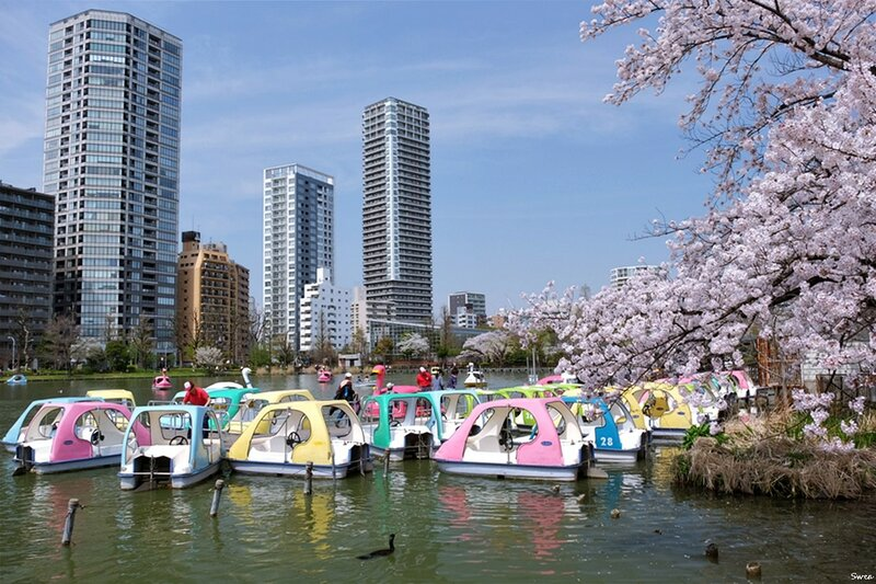 Пруд Синобадзу в парке Уэно