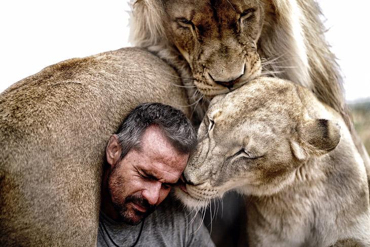 1. «Львы забирались на 2-тонную машину, и она скрипела. Остались вмятины. Это был увлекательный