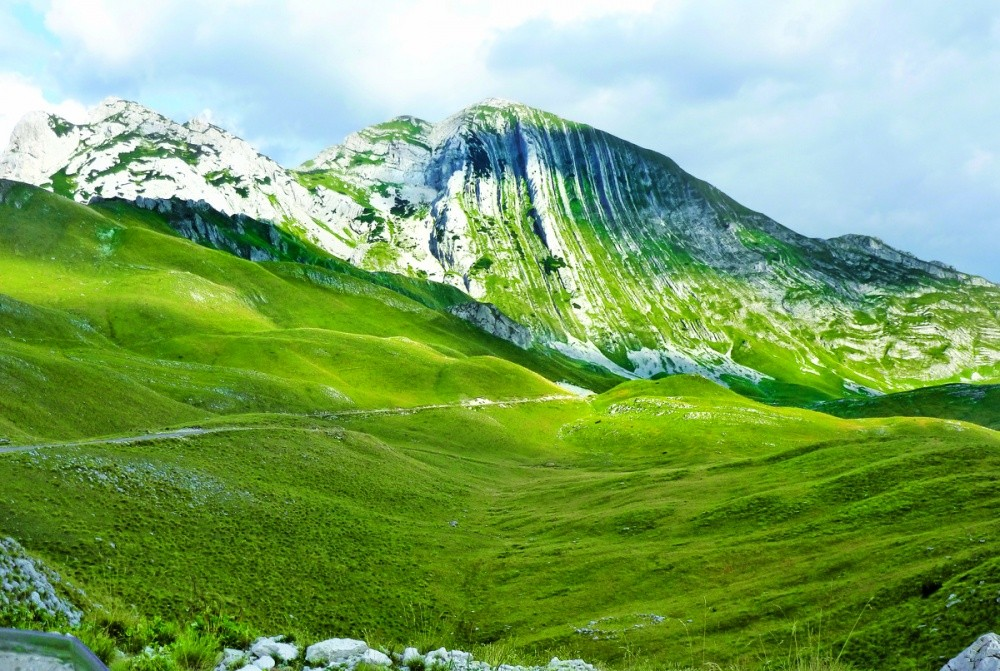 Все оттенки зеленого в летней палитре национального парка Дурмитор. © thebalkanbackpacker