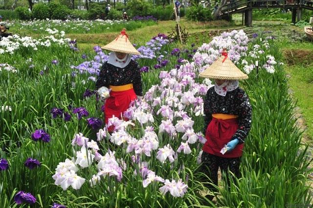 Suigo-sawara-garden8.jpg