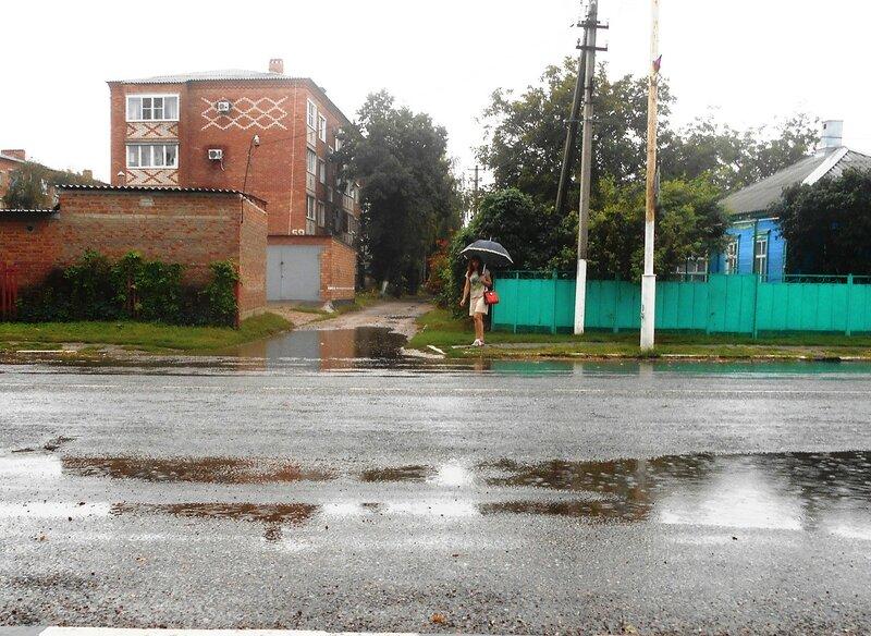 Пауза в пути, дождь, созерцание ... DSCN8960.JPG