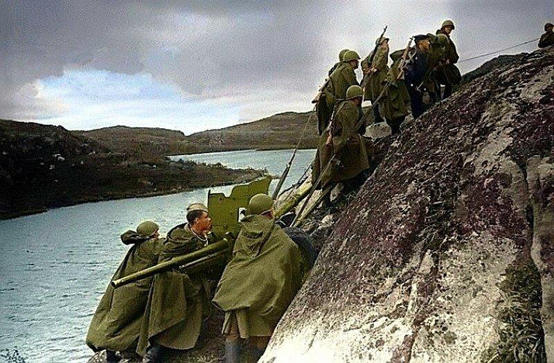 Советские артиллеристы транспортируют 45-мм противотанковое орудие на вершину сопки на Кольском полуострове (полуостров Рыбачий). Фото 1941 года..jpg