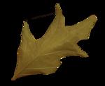 autumn colors factory - bessychou - elem (7).png