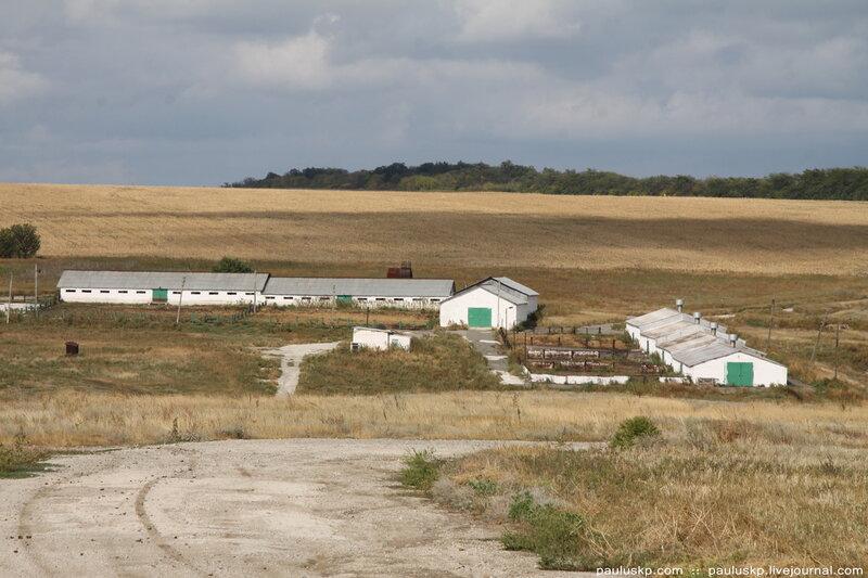 закрыт комплекс на 9 000 овец