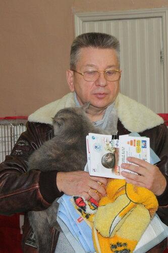 """Международная выставка кошек """"Удивительные кошки"""", 5-6 октября 2013, г. Сургут, ХМАО 0_dd9c7_f8262c7b_L"""