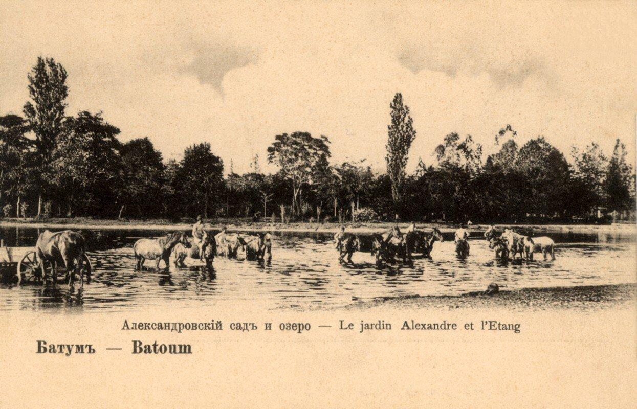 Александровский сад и озеро