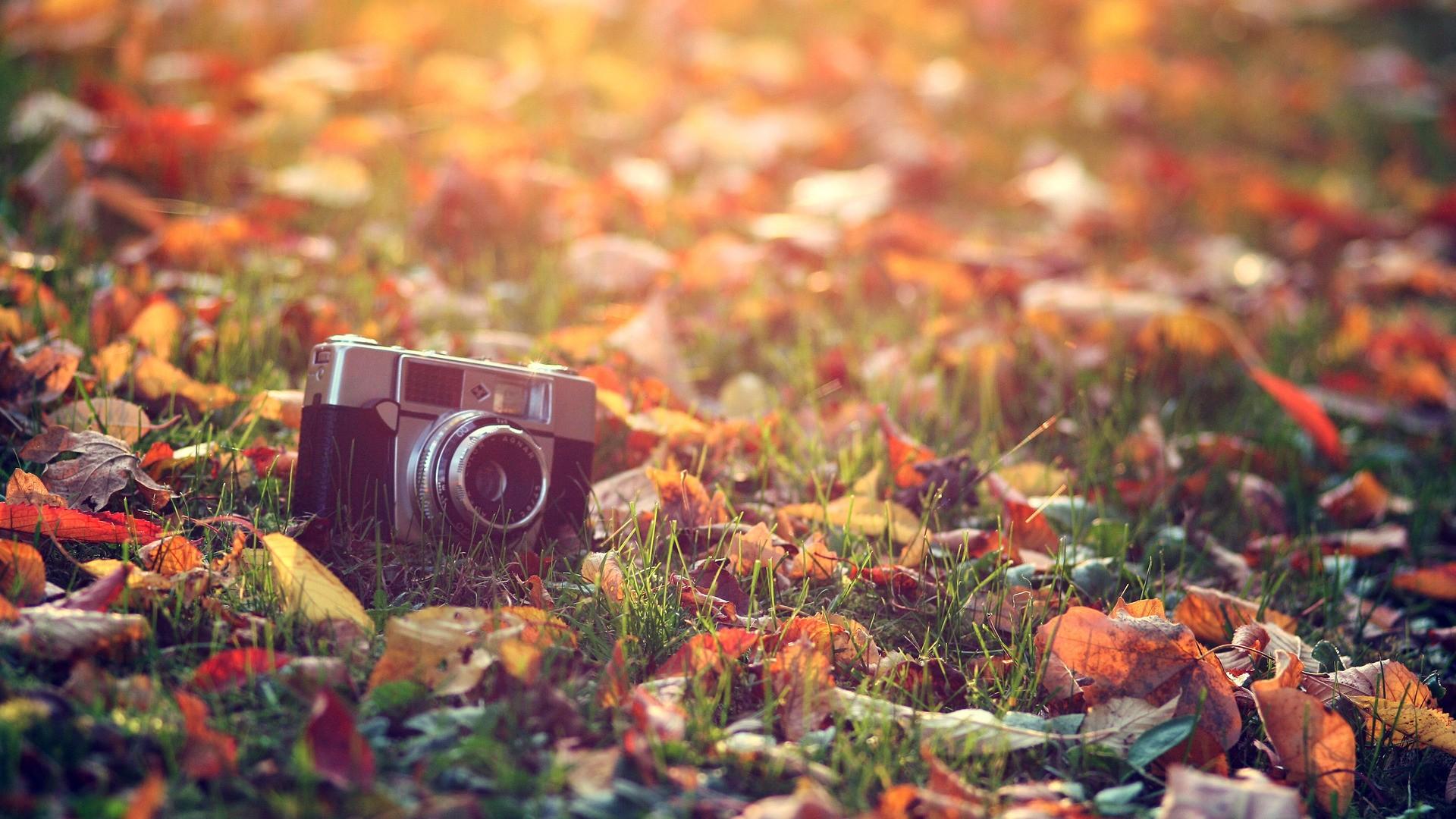 Трахун супер бесплатно ролики 15 фотография