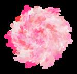 Palvinka_FlowerEssence_flowers3.png