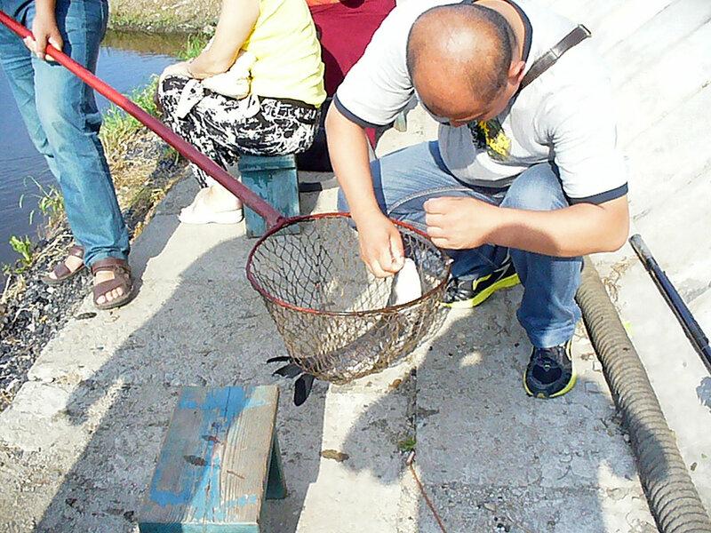 Город Дзиси - на рыбалке
