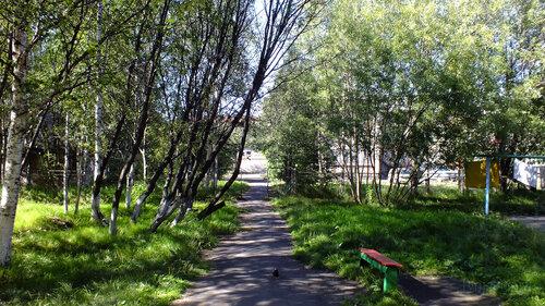 Фотография Инты №5590  Пешеходная дорожка, ведущая от Дзержинского 25 к Дзержинского 27 (ближе к его юго-западному углу) 06.08.2013_14:45