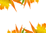 Осень62