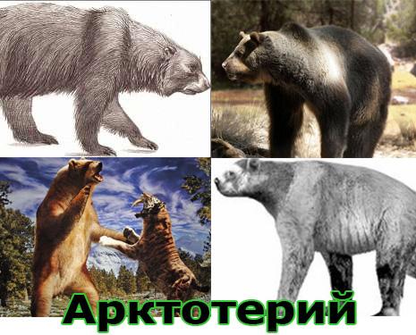 Самые большие животные в мире, существовавшие на земле (фото 9)