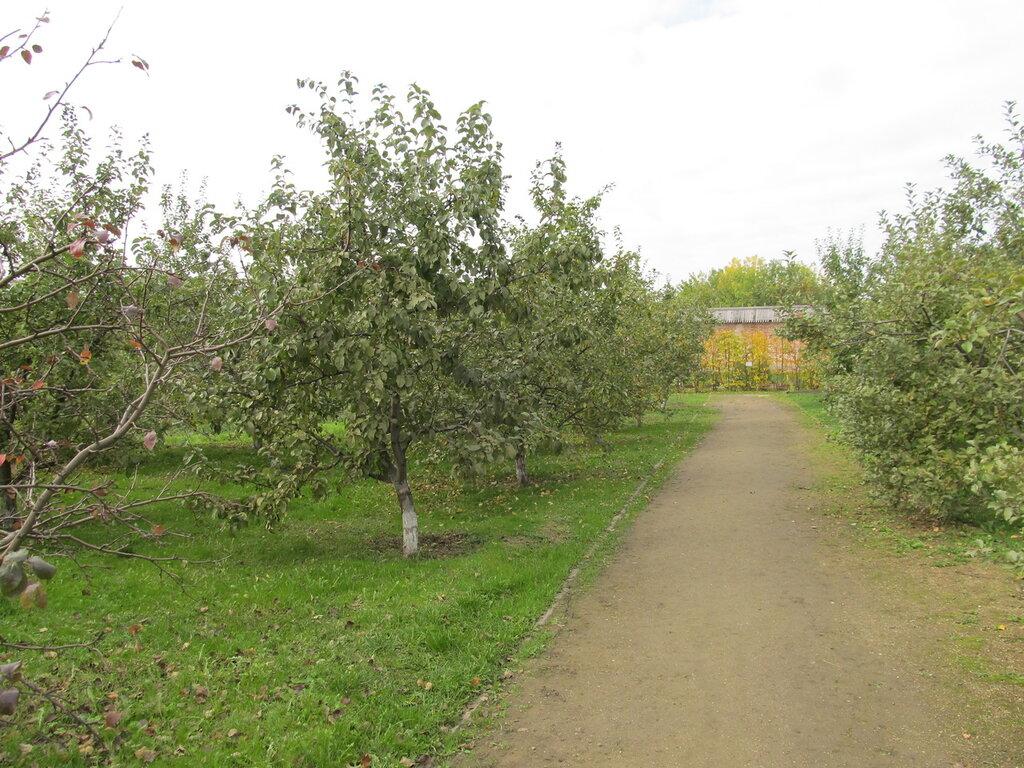 Сад Митрополита