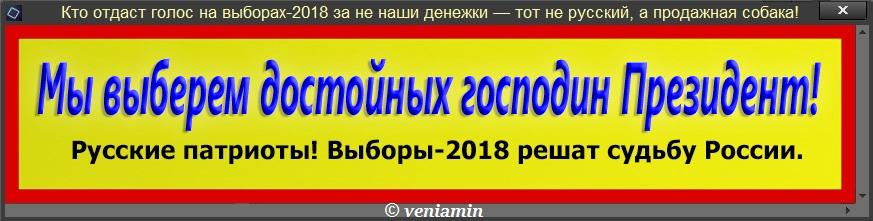 Кто отдаст голос на выборах-2018 за не наши денежки — тот не русский, а продажная собака! табличка