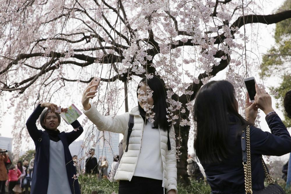 Фото повседневной жизни в Японии