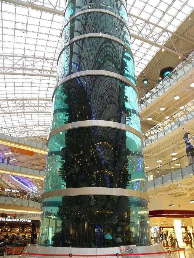 Самый большой цилиндрический аквариум в Москве