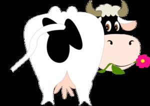 корова с цветочком