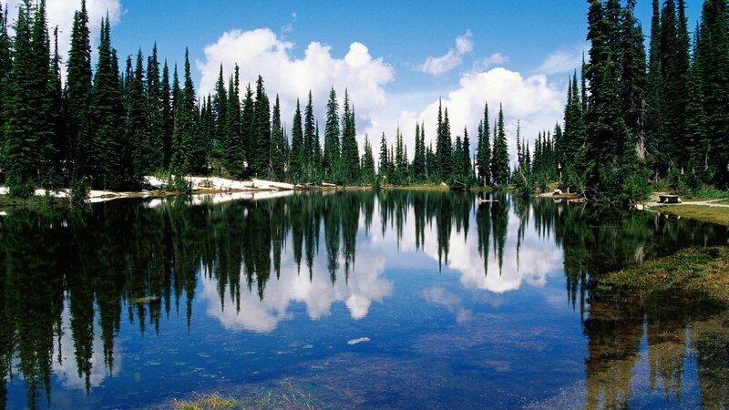 Качественные и красивые обои «Природа» от сайта Новостейки