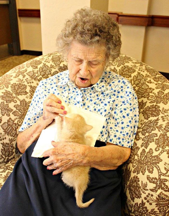 Может показаться странным отдавать этих маленьких котят в руки людей, которые сами нуждаются в забот