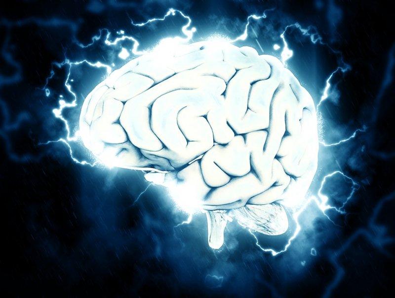 Ученые: Найдены методы для поднятия мозговой активности