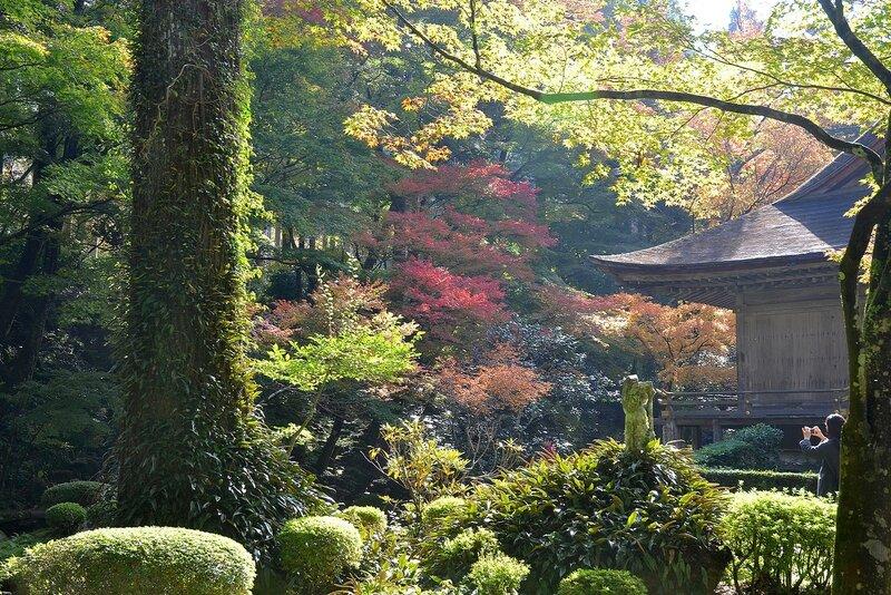Киото, Храм Сандзен-ин с садом мхов.