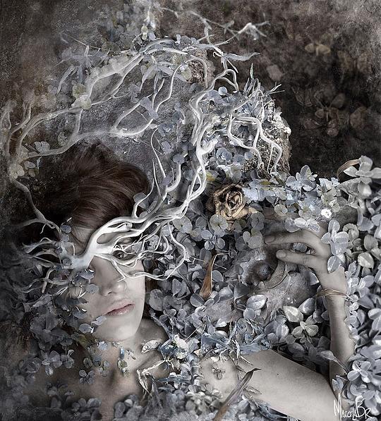 Inspiring Digital Art by Marcela Bolivar