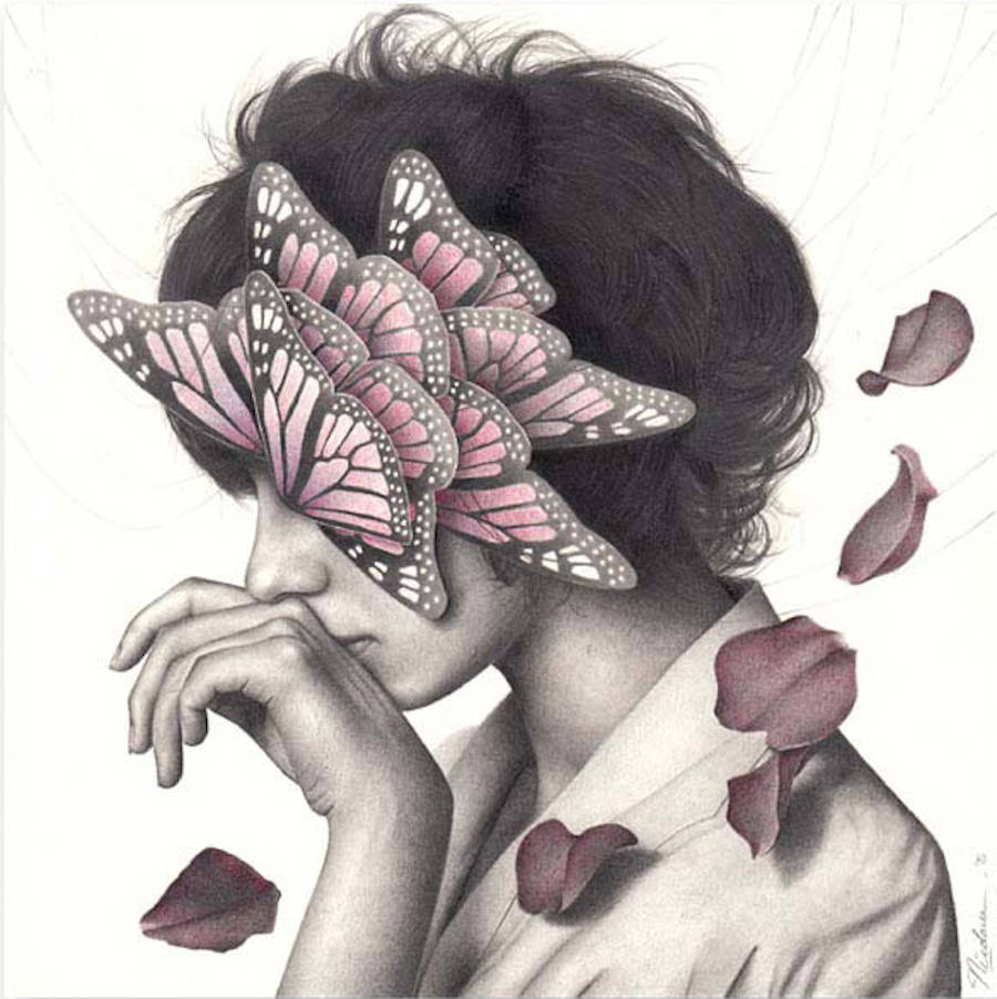 The Butterfly Women Series