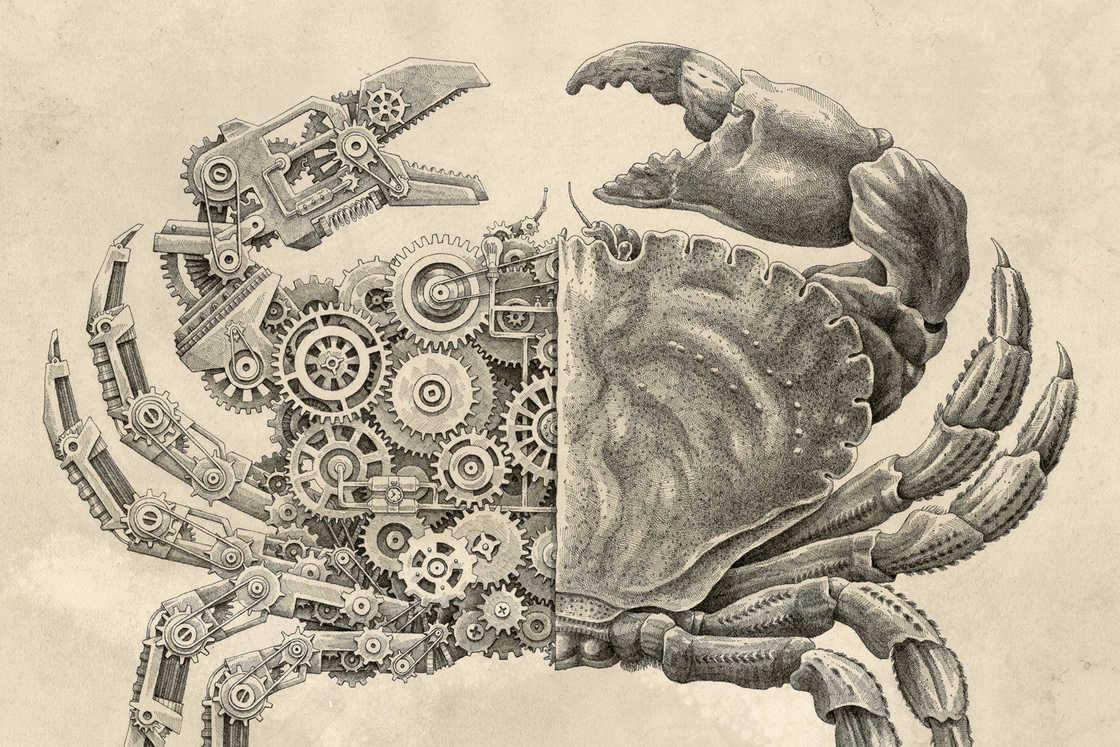 Mechanical Biology – Les illustrations de Steeven Salvat (12 pics)