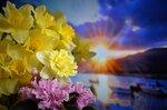"""""""тревожные жёлтые цветы.."""""""