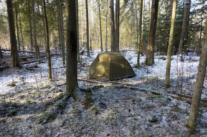 палатка в лесу в гатчины