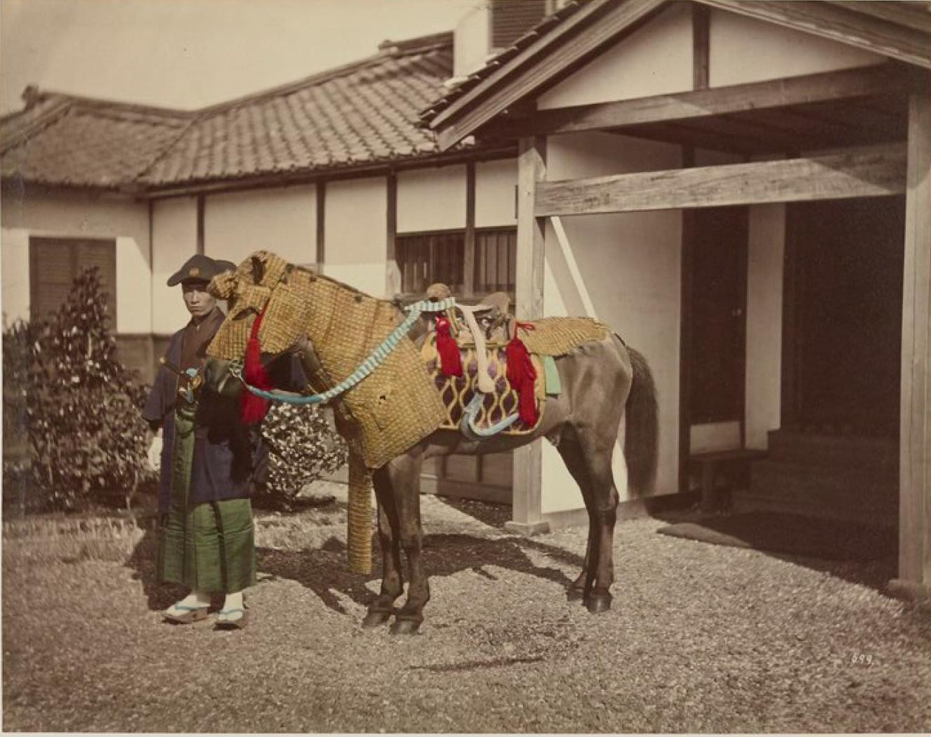 Офицерская лошадь