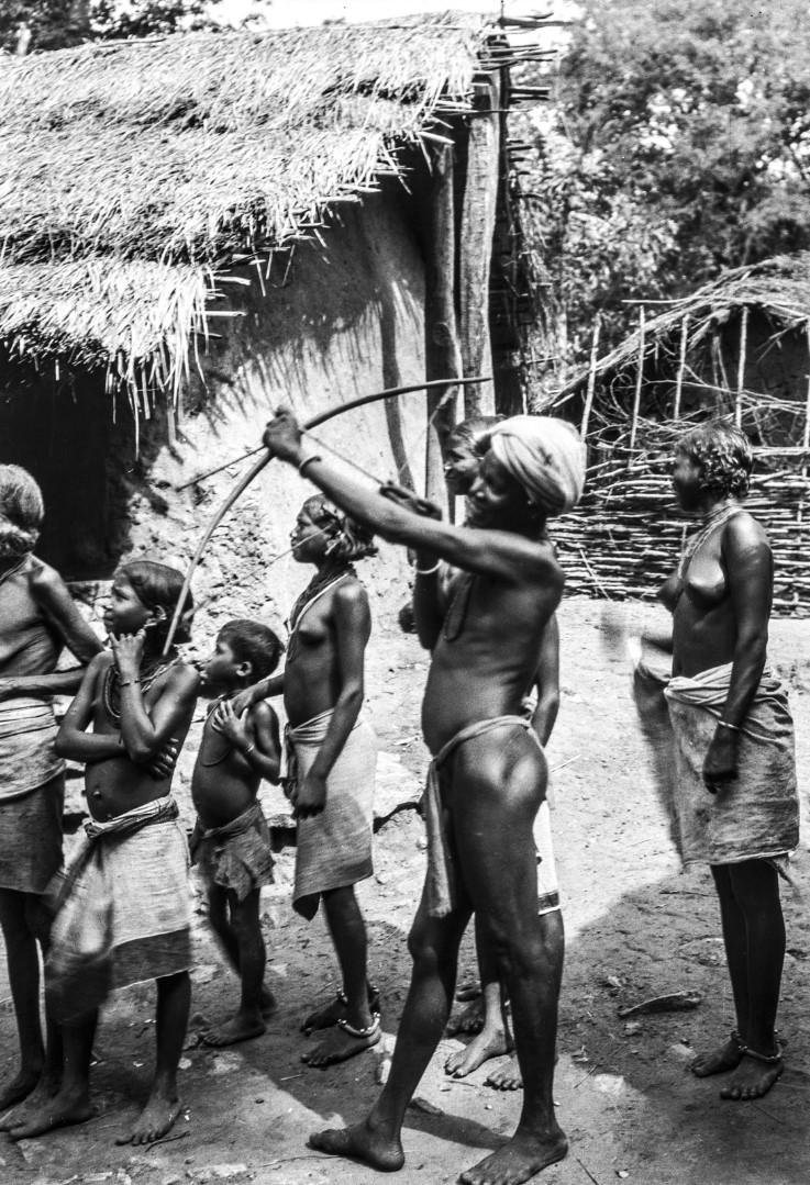 643. Орисса. Мужчина народности соро стреляет из лука в попугая