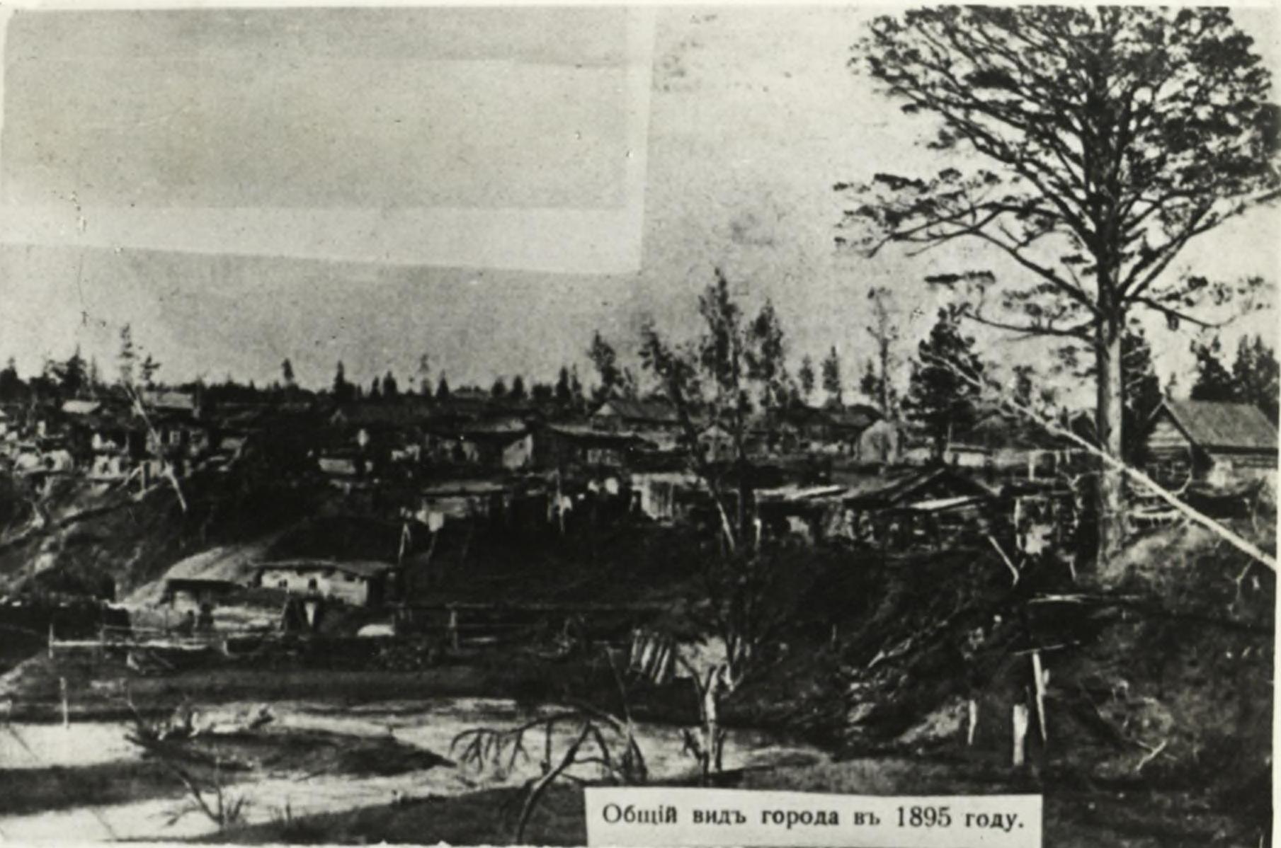 Общий вид города в 1895