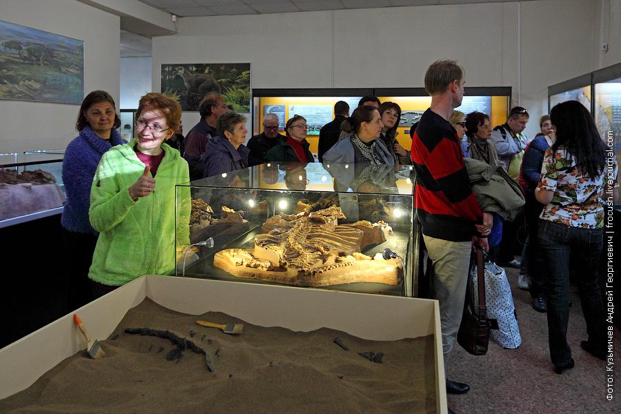 филиал Вятского палеонтологического музея в Котельниче