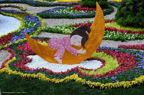 Выставка цветов «Мир детской мечты».