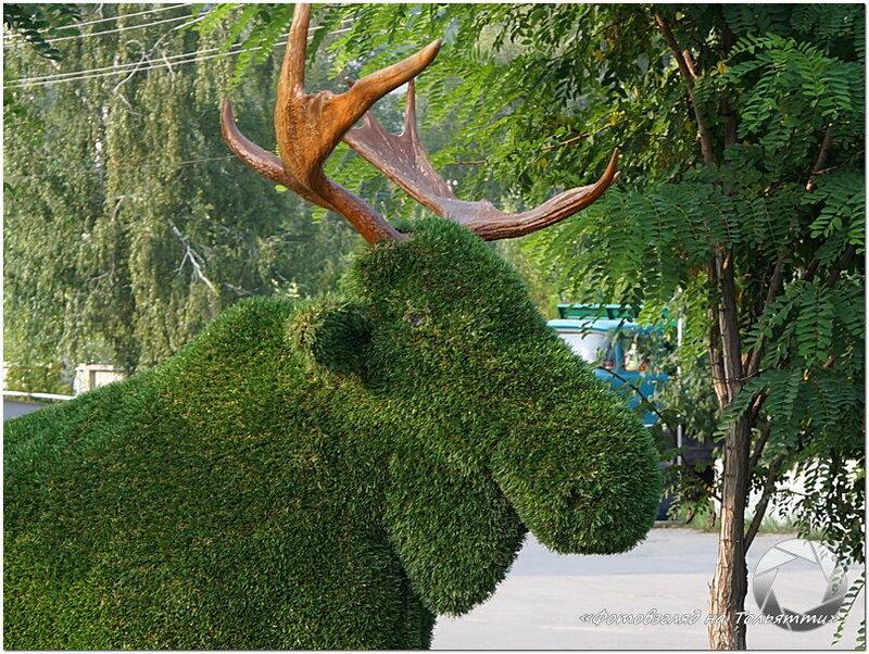 Зеленый лось