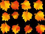 Осень42