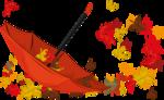 Осень97