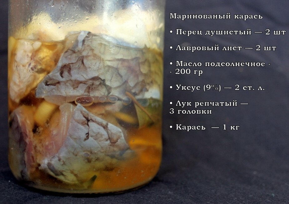 Маринование рыбы в домашних условиях рецепты 109
