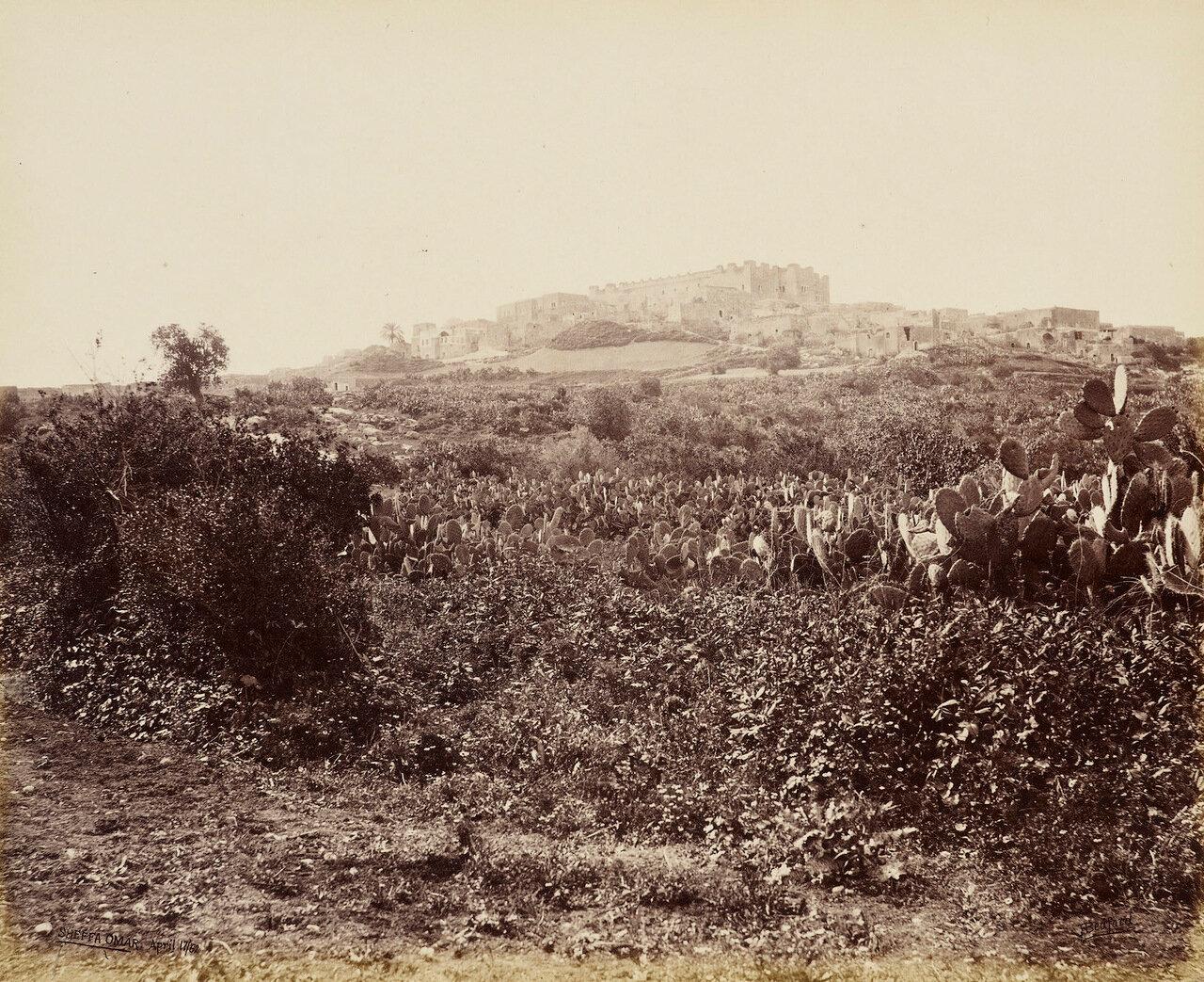 17 апреля 1862. Шеффа Омара