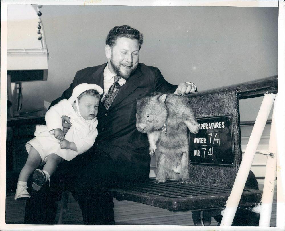 1957. Британский актер Питер Устинов с сыном Игорем и вомбатом